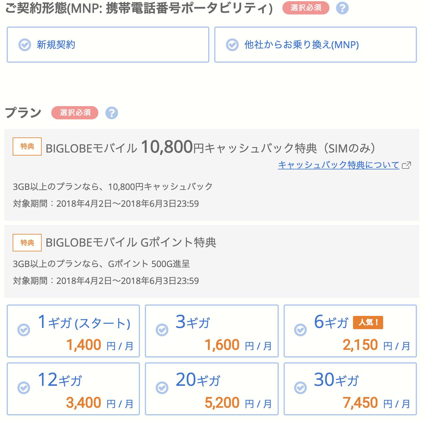 BIGLOBEモバイル_お申し込み3